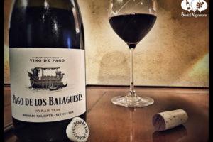 2014 Bodegas Vegalfaro Pago de los Belagueses Syrah, Vino de Pago, Spain