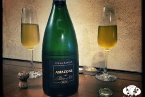 Amazone de Palmer & Co Brut, Champagne