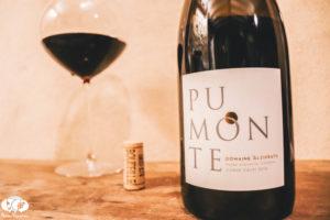 How Good is Alzipratu Pumonte Corsica Red Wine?